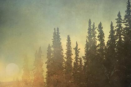 Kesler Woodward - Land of the Midnight Sun: Landscapes of Alaska