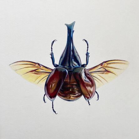 Hannah Hanlon, 'Coleoptera Chroma #19', 2020