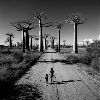 Chris Simpson, 'Allée des Baobabs, Madagascar', 1997