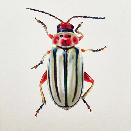 Hannah Hanlon, 'Coleoptera Chroma #17', 2020