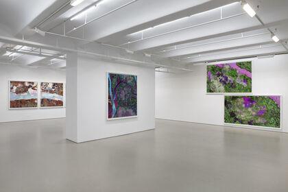 Richard Mosse: Tristes Tropiques