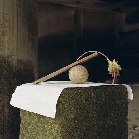 Angela Blažanović, 'Red Wire, Ball and a Salad Leaf', 2019