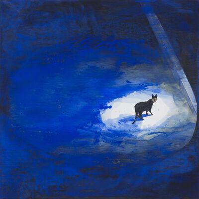 Noel McKenna, 'Cat on street, night ', 2016