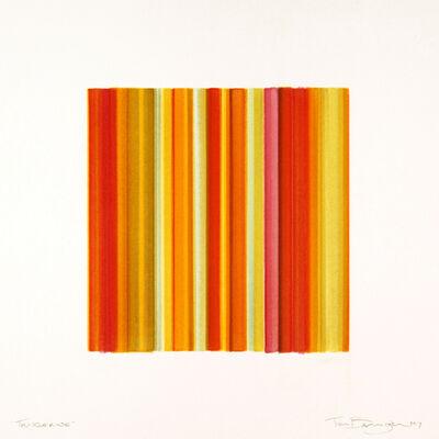 Tim Bavington, 'Tangerine', 2017