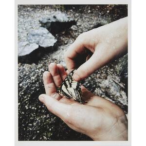 Jesse Burke, 'I'll Fly Away II', 2016