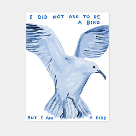 David Shrigley, 'I Did Not Ask To Be A Bird', 2020