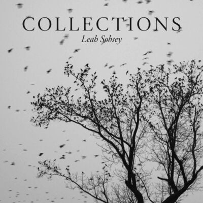 """Leah Sobsey, '""""Collections""""', 2016"""