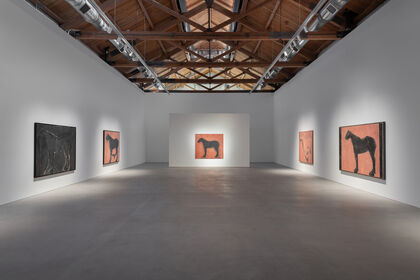 Susan Rothenberg: On Both Sides of My Line