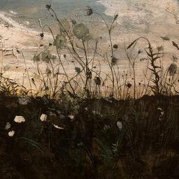 Linda Matney Gallery