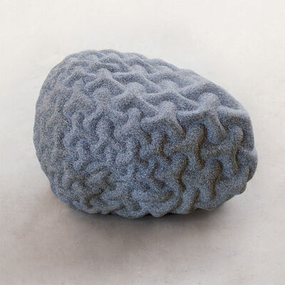 Peter Randall-Page, 'Warp and Woof '