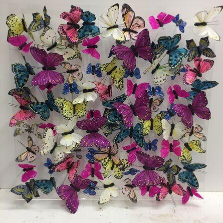 Michael Olsen, 'Butterflies ', 2019