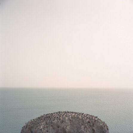Kurt Tong, 'Niao Dao', 2015