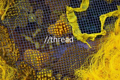 //thread