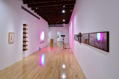 Portadores de sentido (Bearers of meaning). Contemporary Art in the Colección Patricia Phelps de Cisneros (CPPC)