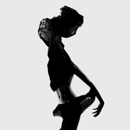 Flóra Borsi, 'Des Monstres V', 2013