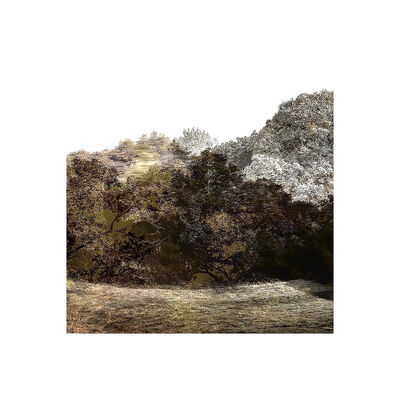 Overlap, 'Trees & Keys - Mix 1.4, 3360 : Print', 2016