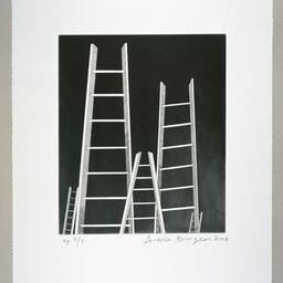 Carolina Nitsch Contemporary Art