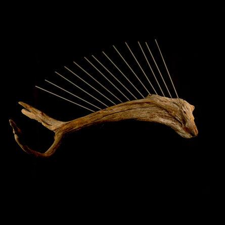 Eric Hado, 'Sailfish', 2014
