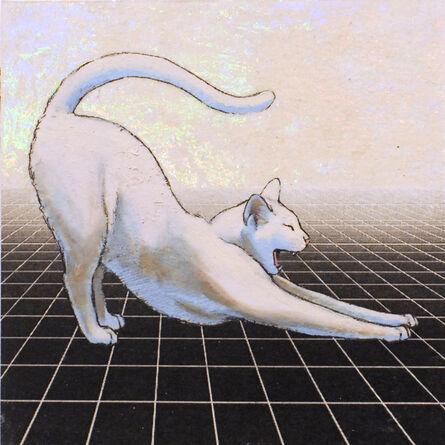 Alexis Kandra, 'Infinite Cat', 2019