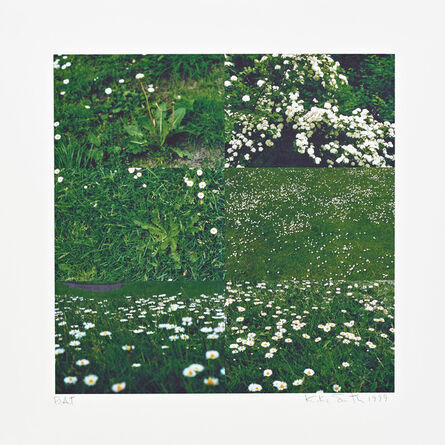 Kiki Smith, 'Little Meadow', 1999