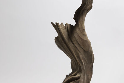 "Vol.123 Hiroto Nakanishi ""Yadorigi"" - trees divine spirit resides in -"