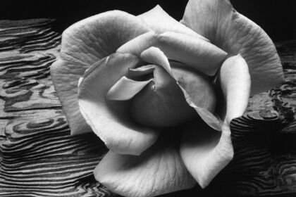 KNOWING WHERE TO STAND: ANSEL ADAMS