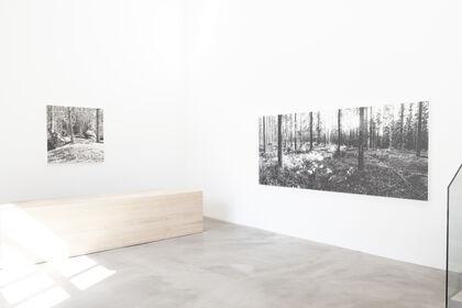 YUICHIRO SATO | On the Earth
