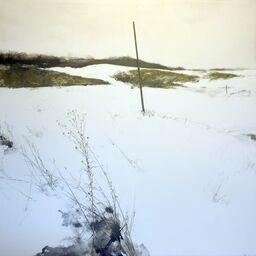 Turner Carroll Gallery