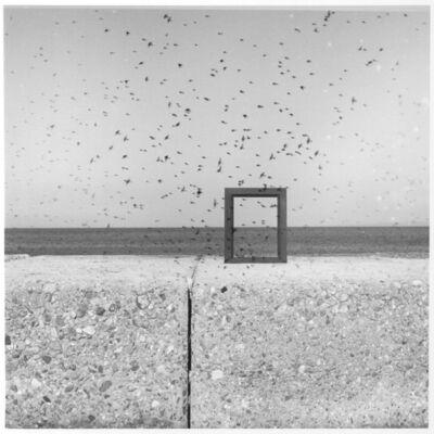 Shoji Ueda, 'A Flock of Birds', 1952-1953/1970's