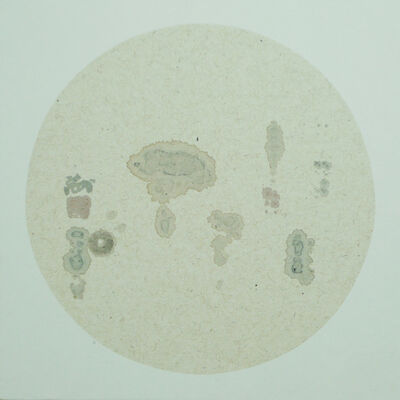 Shi Jinsong 史金淞, 'Ba bao tu八寶圖', 2014