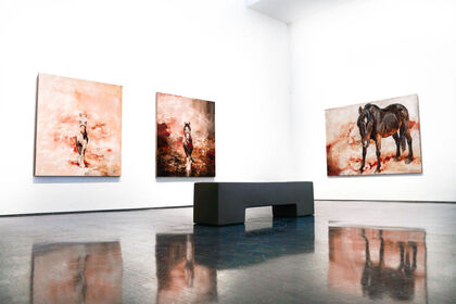 """Kevin Sonmor """"Curious Migrations"""""""