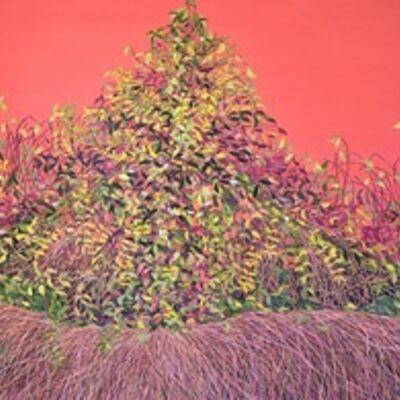 Allison Green, 'Sienna Thicket (Thicket #4)', 2011