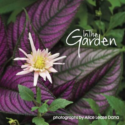Burns Archive, 'In The Garden: Flower Photographs of Alice Lease Dana', 2017