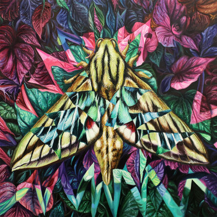 Angela Gram, 'Hawk Moth', 2020