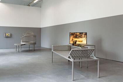 Andrea Blum. Parallel Lives