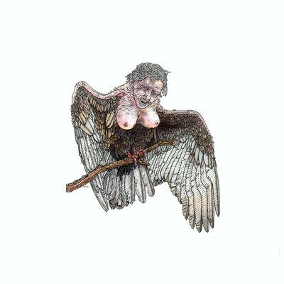 Nicholas Di Genova, 'Female Harpy', 2015