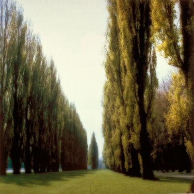Lynn Geesaman, 'Parc de Sceaux, France (5-95-9c-9)', 1995