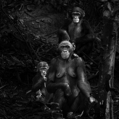 Isabel Muñoz, 'Untitled. Primates Series', 2015