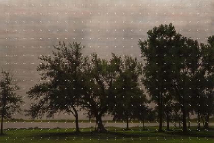 David Klamen: Landscapes