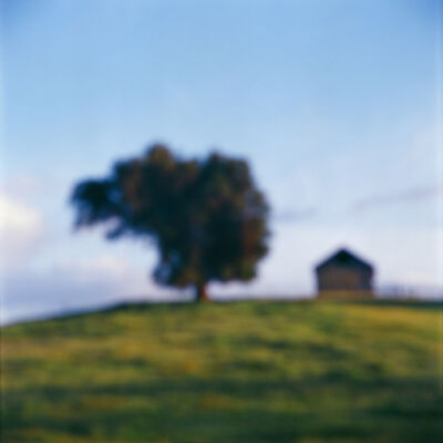 John Huggins, 'Tree and Barn, California', 2014