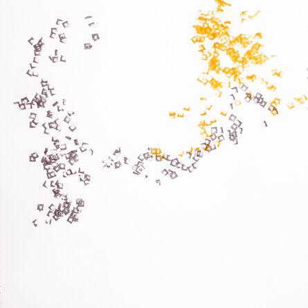 Alisa Dworsky, 'Follow the Nut 40', 2017