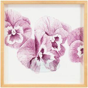 "Ken Aptekar, 'The Name Of The Flower: Pansy ""Joker Viola-Gold""', Late 20th Century"