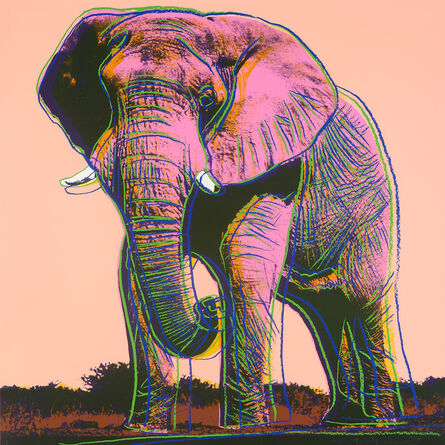 Andy Warhol, 'African Elephant, from Endangered Species (F. & S. 293)', 1983