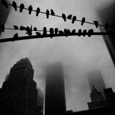 Ashley Gilbertson, 'Trump Tower, New York', 2017