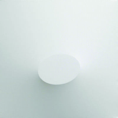 Turi Simeti, 'Un ovale bianco', 2014