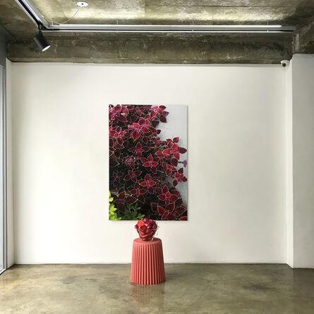 Yujung Chang, 'Natural Nature #3', 2019