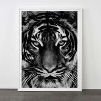 Robert Longo, 'Tiger, 2011', 2011