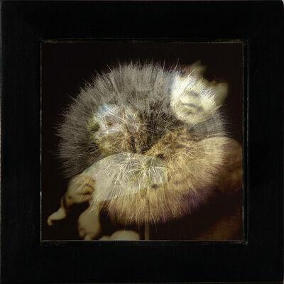 Ann Weiner, 'Memory', 2005