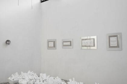 Detritus in white