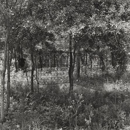 Carrie Mae Weems, 'Untitled (Box Spring in Tree) (from Sea Islands Series)', 1991-1992